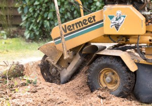 Benefits of Hydraulic Systems in stump grinders